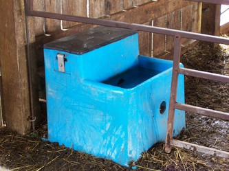 Automatic watering systems can provide a constant supply of fresh water to goats.