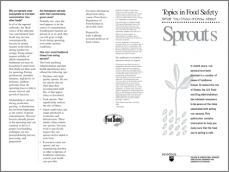 What You Should Know About Sprouts