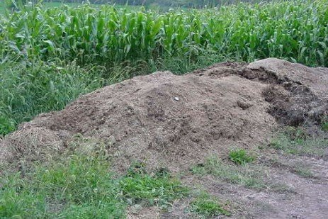 Mortality Composting Guidelines