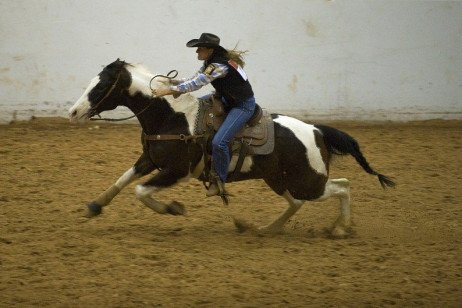 Riding Arena Footing Material Selection and Management