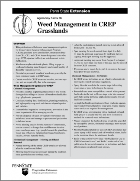 Weed Management in CREP Grasslands