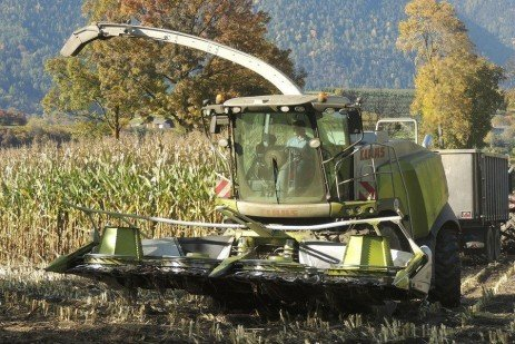 Troubleshooting Silage Problems