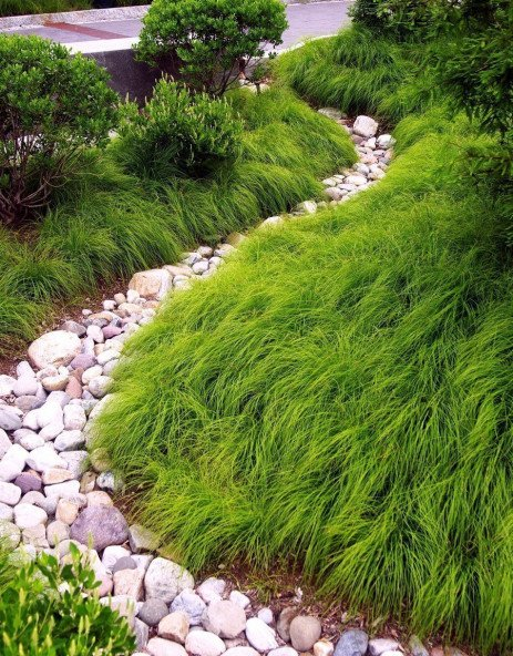 Improving Stormwater Quality