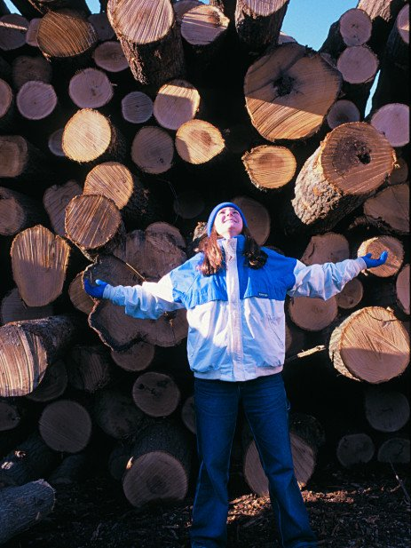 From the Woods: Hardwood Lumber