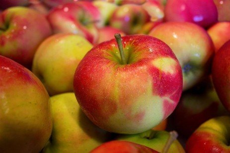 Standard Apple Varieties for Home Fruit Plantings
