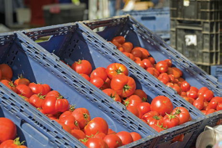 Food Safety Modernization Act - Produce Safety Rule