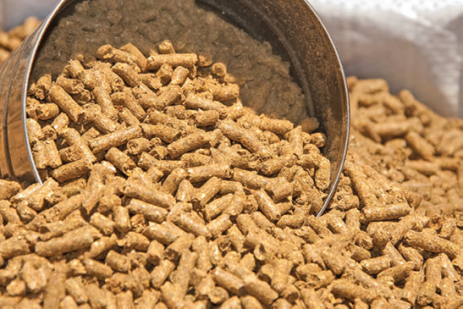 Food Safety Modernization Act - Preventive Controls for Animal Feed Rule