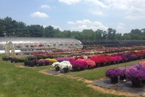 A Water Quality Toolkit for Greenhouse and Nursery Production
