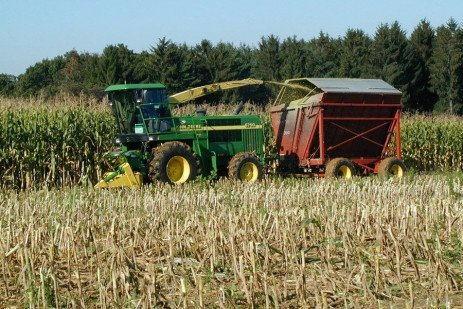 From Harvest to Feed: Understanding Silage Management