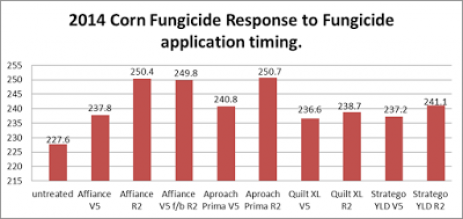 When to Consider Foliar Fungicide Applications on Corn