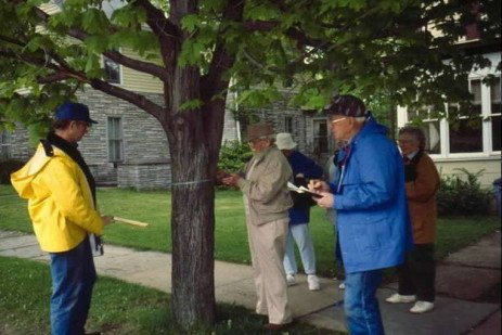 Conducting a Community Tree Inventory
