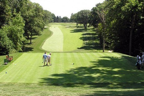 Evaluation of New Bentgrasses for Golf Course Fairways and Tees