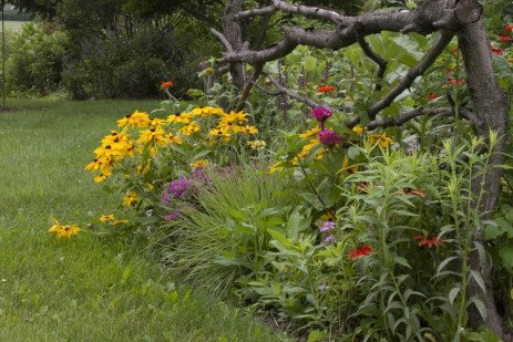 Planting in Sun or Shade