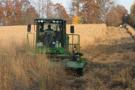Biomass Crop Producers Eye Favorable Marketplace