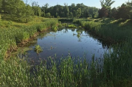 Montgomery County Watershed Steward Explains Benefits of Stormwater Management