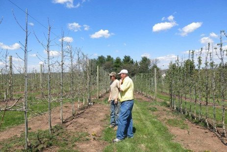 Models for the Future: Bedminster Orchard