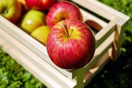 Scab-resistant Apple Varieties for Home Orchards