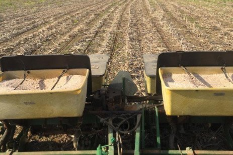 Planting Date, Temperature, Spacing, and Emergence: What Really Matters?