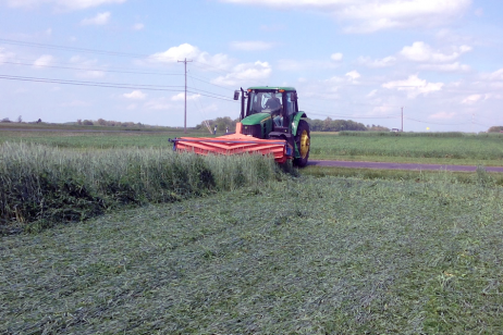 Growing Cover Crops for Nitrogen on Vegetable Farms