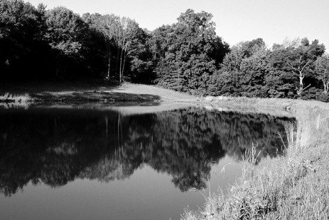 Management of Fish Ponds in Pennsylvania