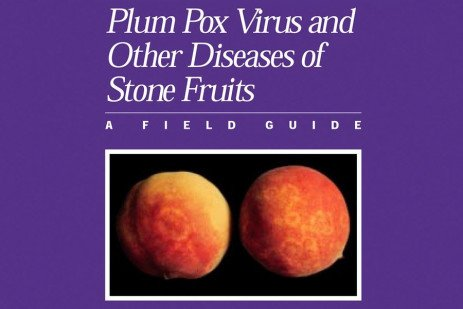 Plum Pox Virus on Almond