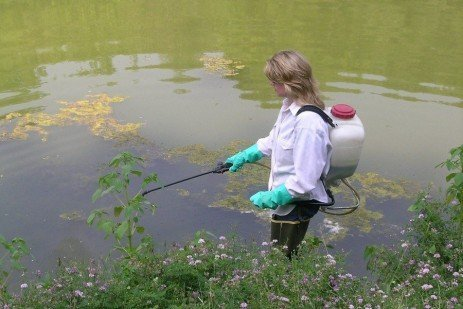 Permit Requirement for Use of An Aquatic Herbicide in Ponds