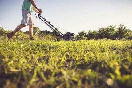 Recycling Turfgrass Clippings