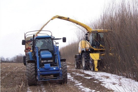 Safety and Health Management Planning for Biomass Producers