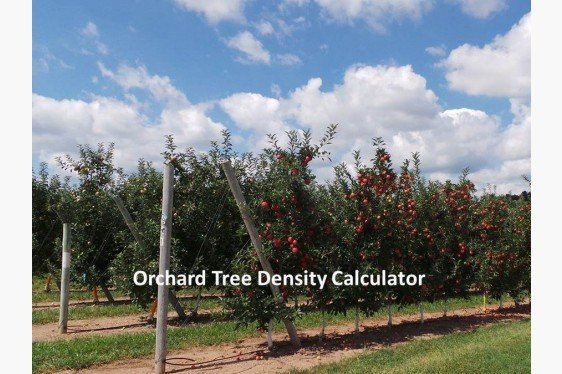 Costs and Returns Calculator to Compare Blocks of Varying Tree Densities