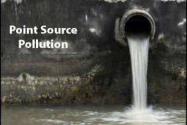 Learn, Protect, and Promote Water Lesson Plan and Demonstration