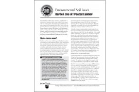 Environmental Soil Issues: Garden Use of Treated Lumber