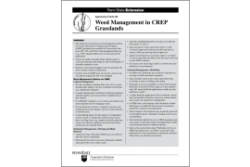 Weed Management in CREP Grasslands