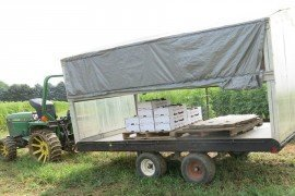 Covered harvest wagons help keep birds from contaminating clean harvested produce.