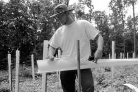 Forest Finance 7: Tree Shelters: A Multipurpose Forest Management Tool