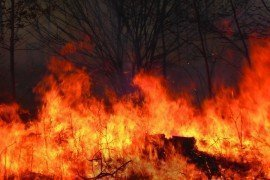 Wildfire burns a Pennsylvania forest. Photo courtesy PA Bureau of Forestry.