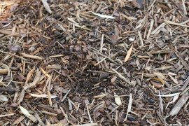 Mulches for Weed Control in Home Fruit Plantings