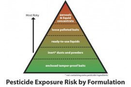 The pyramid explains some of the different tactics used in an IPM approach.