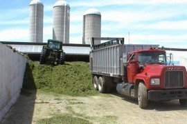 Managing Silage Effluent