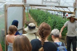 Marshall Hart leads a tour of the hoophouse production at Braddock Farms.