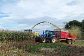 Trading Corn Silage Guide