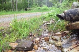 A small roadside spring located along a state forest road in northcentral Pennsylvania.