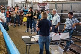 Note: everyone is wearing protective booties in an effort to minimize biosecurity risk