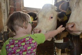 Food from the Farm: Nutrition Activity Booklet