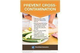 Food Safety Poster: Prevent Cross-Contamination