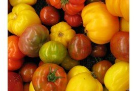 By Denise Krebs (Heirloom tomatoes) [CC BY 2.0 https://creativecommons.org/licenses/by/2.0)], via Flickr