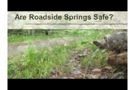 Are Roadside Springs Safe?