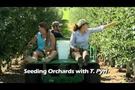 Orchard IPM - Scouting