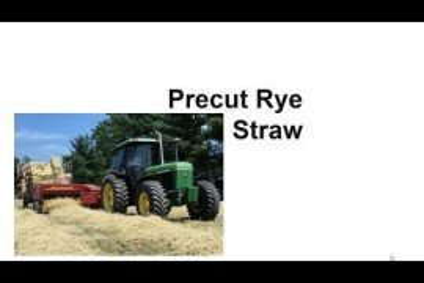 Precut Rye Straw