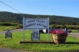 On the Road: Sugar Valley Produce Auction
