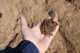 How quickly can you increase soil organic matter content?